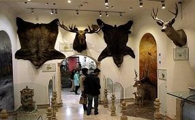 تور SODET به مقصد موزه حیات وحش دارآباد
